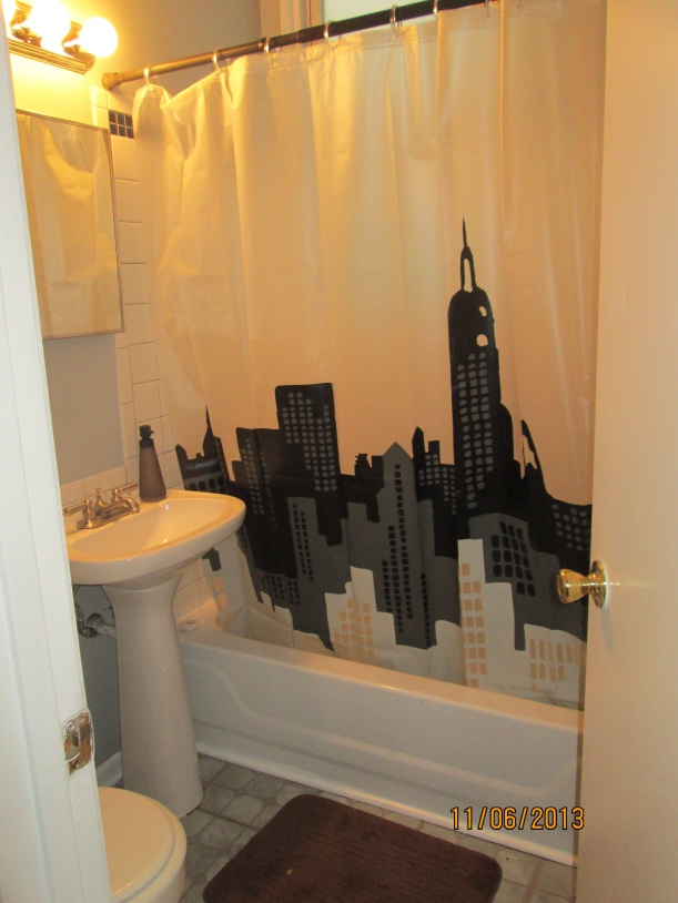 The little NY part of our apartment (I picked that shower curtain)