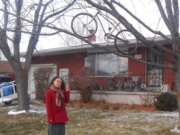 bike on a tree??